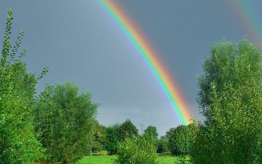 オパールの使命「天に架ける虹の橋」