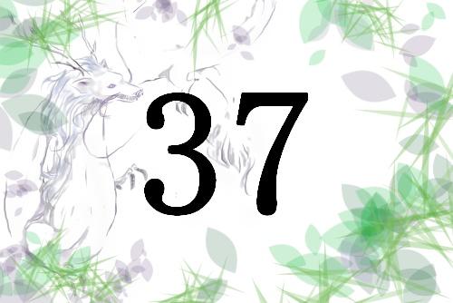 名前が暗示する人生の転機と運 総画37 福運を生かすには