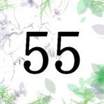 名前が暗示する人生の転機と運 総画55 福運を生かすには