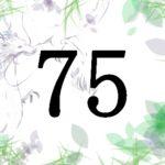 名前が暗示する人生の転機と運 総画75 福運を生かすには